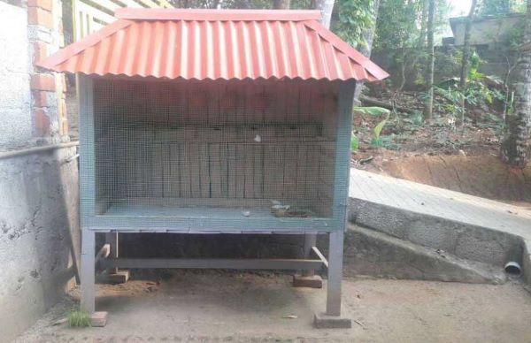 Dog Kennel Sale In Hyderabad