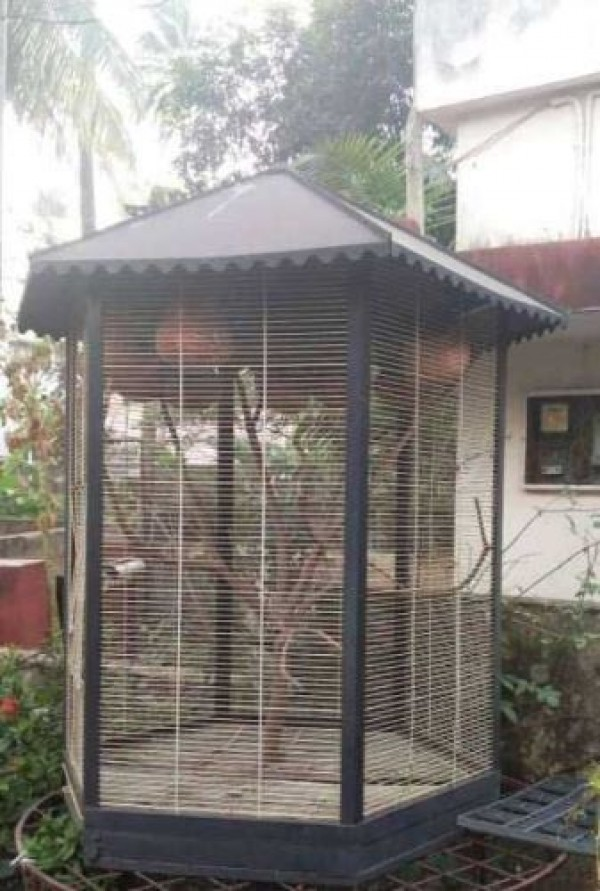 Birds Cage With Pots For Sale At Kottayam Kottayam